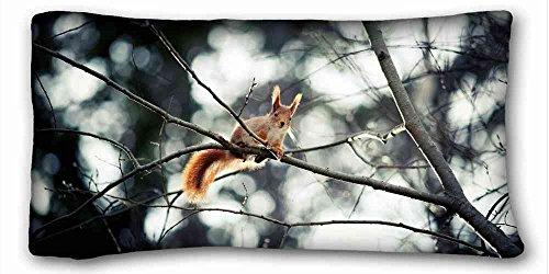 Carcasa algodón y poliéster suave (animales gato caras triste Spotted) personalizado con cremallera funda de almohada de 20x 36cm (One lados) de sorpresa que apto para queen-bed pc-orange-22837