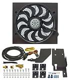 Derale 20161 Jeep Wrangler Direct Fit Electric Fan Kit , Black