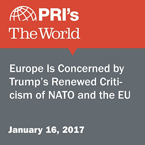Europe Is Concerned by Trump's Renewed Criticism of NATO and the EU cover art