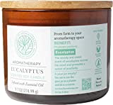 Farm to Aromatherapy 2-Wick Candle with Wooden Lid, Eucalyptus, Clean & Pure, Long Burning, Stress Relief, Promotes Wellness, Revitalizing & Clarifying with Therapuetic Qualities, 9.7 oz.