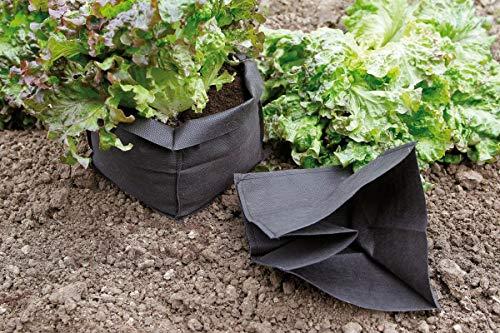 Lot de 12 Sacs de Protection pour Salade Bag Biocontrol
