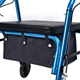 AROUY Walker Bag Under Seat for Four Wheel Rollator, Rollator Bag Tote Organizer Pouch Storage to Walkers for Senoirs, Walker Accessories (Black, M)