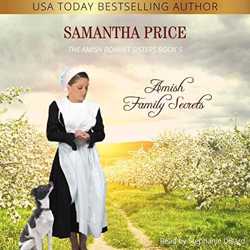 Amish Family Secrets  By  cover art