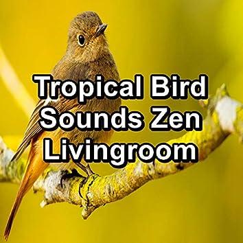 Tropical Bird Sounds Zen Livingroom