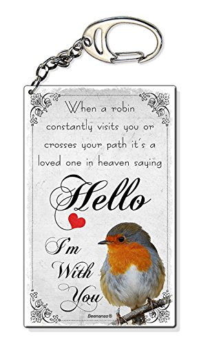 Beenanas Robin Sympathy Loved One In Heaven Small Plastic Keyring Keychain Bag Charm