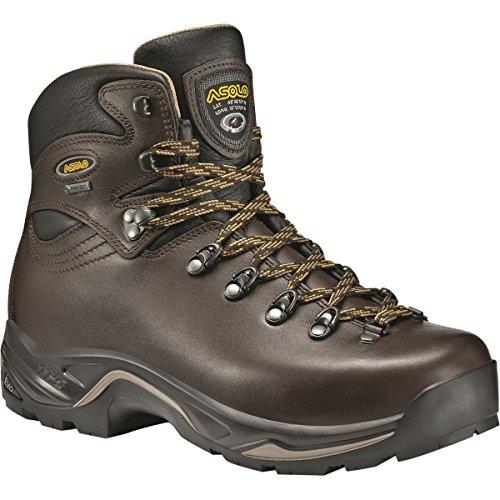 Asolo Women's TPS 520 GV EVO Chestnut Boot 8 D (M)
