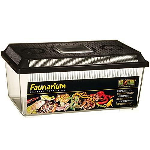 Exo Terra Faunarium flach mittel - Allzweckbehälter für Reptilien, Amphibien, Mäuse und Insekten