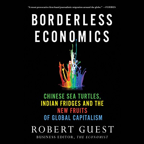 Borderless Economics audiobook cover art