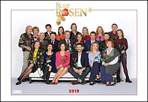 Rote Rosen 2019 - Broschürenkalender - Wandkalender - mit Jahresplaner - Format 42 x 29 cm
