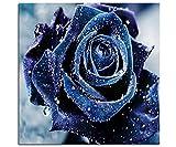 Blxecky DIY 5D Diamant Peinture Point De Croix Broderie Diamond Painting Kits Salon Chambre Décoration Autocollant Mural,Rose Bleue (16X16 Pouces / 40X40cm)