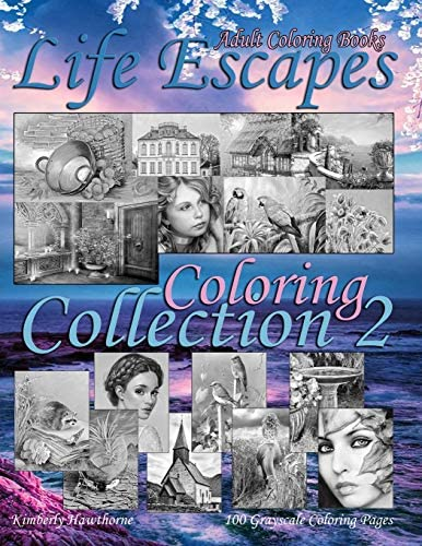 Adult Coloring Books Life Escapes Coloring Collection 2 Life Escapes 2nd Annual Huge Variety product image