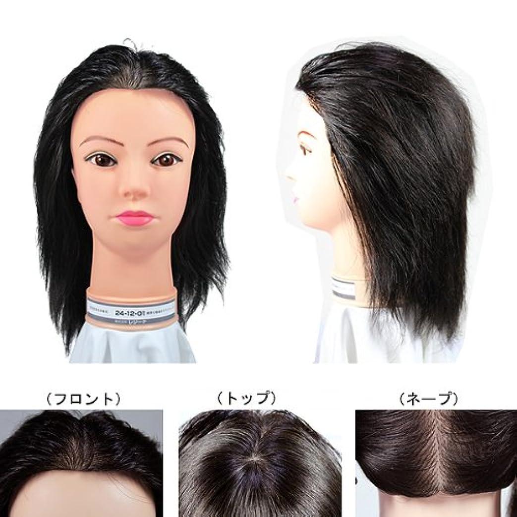 ハブ効率的スローガンレジーナ 美容師実技試験用ウィッグ 24-12-01