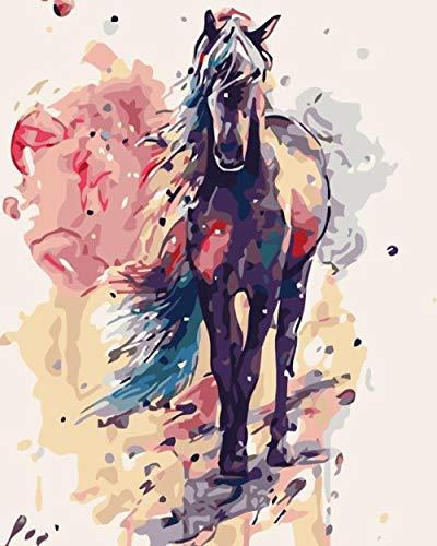 HGSWYUD Pintar por Numeros para Adultos Niños, Caballo DIY cuadro para pintar con numeros,cuadros por numeros,pintar por numeros 40x50cm Sin Marco