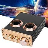 Preamplificatore, preamplificatore fono amplificatore valvolare NE5532 Home Audio Lega di alluminio per TV per casa per telefono per lettore CD per MP3