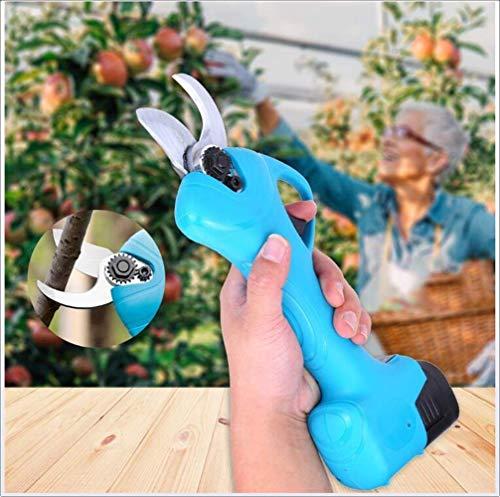 Unknow Sécateur électrique sans Fil Professionnel avec 2 Paquets de Sauvegarde Rechargeable 2Ah Batterie au Lithium Sécateur de Branche d'arbre Sécateurs de Jardin Outils pour l'élagage d'arbre