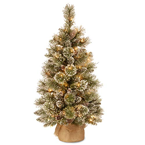 National Tree Company Pre-lit Artificial Mini Christmas Tree   Includes Small LED Lights, White Tipped, Glitter Branches Cones and Cloth Bag Base   Glittery Bristle Pine-3, 3'