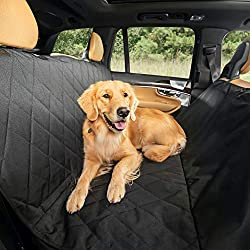 Best Dog Car Hammock Options - Top Options Reviewed!