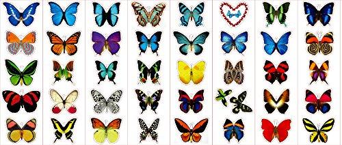 Premium Schmetterlings-Aufkleber, Aufkleber – für Karten, Umschläge, Laptops, Fenster