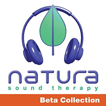 Relaxing and Inspiring Sound Therapy Beta 1