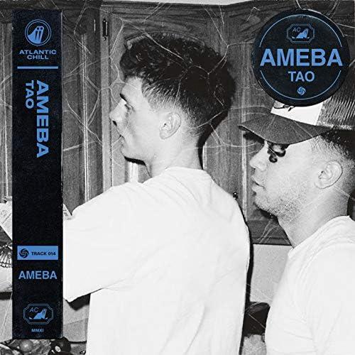 Ameba & Atlantic Chill