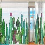 Ahomy Aquarell Kakteen Sukkulenten Blumen Voile Gardine Vorhang für Küche Wohnzimmer Schlafzimmer 2 Panels 140 x 198 cm, Polyester, Multi, 139.7x198.1 cm