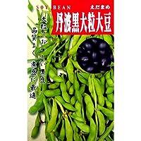大豆 種 丹波黒大豆 小袋(約75粒)