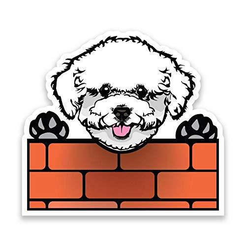 More Shiz Bichon Frise Dog Peeking Over Wall Vinyl Decal Sticker - Car Truck Van SUV Window Wall Cup Laptop - One 6.5 Inch Decal - MKS1239