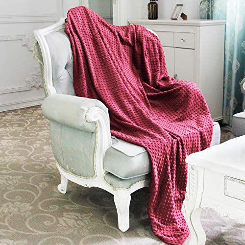 Homde Duvet Cover for Weighted Blanket | Breathable Cotton and Soft Minky Dot | 48 x 72 Inch, Light Wine Red
