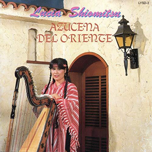 Alto Paraná (Cover)