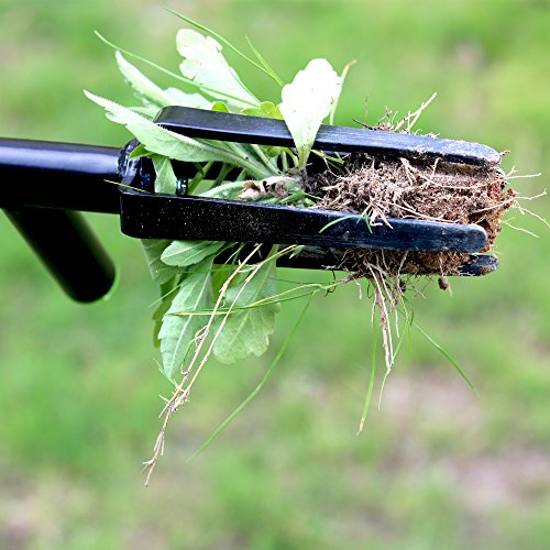 FLORA GUARD 3.3 Feet Weeding Tool- Stand-Up Weeder Removal Tool, No-Bending Weeder Remover with Foot Plate and 4 Claws
