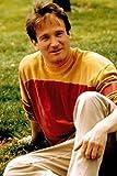 POSTERS Robin Williams Mini 28cmx43cm