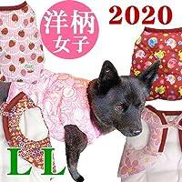 [犬のちゃんちゃんこ 国産品][2020新柄]洋柄 女子 LLサイズ 犬服 ドッグウェア LL,12.ギンガムオレンジ