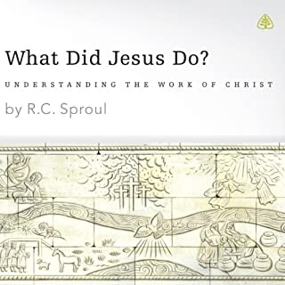 What Did Jesus Do? cover art