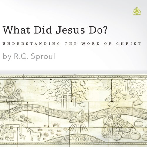 What Did Jesus Do? audiobook cover art