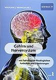 Gehirn und Nervensystem - Wolfgang Weninger