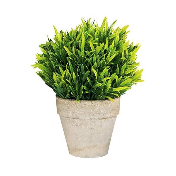 Small Artificial Plants in Pots for Home Decor Fake Faux Feaux Face Decorative Plant Decoration Arrangements Mini Artificial Potted Plants Greenery Decor Shelf Desk Office