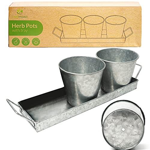 Kräutertöpfe für Zimmerpflanzen mit Tablett | Frische Kräuter Zuhause Anbauen | Kräutertopf Küche | Kräutergarten | Indoor-Pflanzenanzuchttöpfe für Basilikum, Minze, Petersilie etc