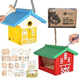nanayo Wild Birds DIY Bird House Kit for Kids to Build - Birdhouse and Bird Feeder Wood Building Kits with Hanging Chain and Rope, Mallet, Paints and Brushes, Sandpaper, Glue and Bird Discovery Guide