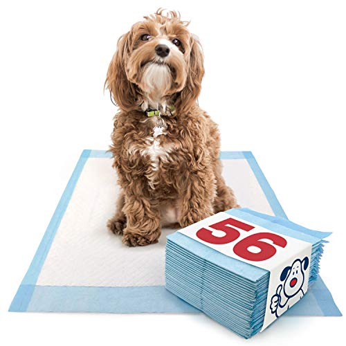 ValuePad Puppy Pads, Medium 23x24 Inch, Economy, 56 Count - Training Pads for Dogs, Leak Proof 5-Layer Design, Perfect for Puppies, Smaller Dogs