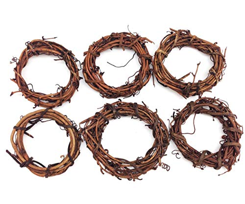 PEPPERLONELY 2 PC Natural Grapevine Star Wreath, 10 Inch
