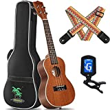 CAHAYA Concert Ukulele 23 Inch Starter Kit Beginner with Gig Bag, Rainbow Strap, Digital Tuner, for Both Adults and Kids, Sapele