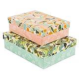 goldbuch 85 670 Turnowsky Design Essence of Green & Apricot, Set de 2 cajas en diferentes tamaños, 2 cajas de regalo con impresión artística, relieve dorado y relieve
