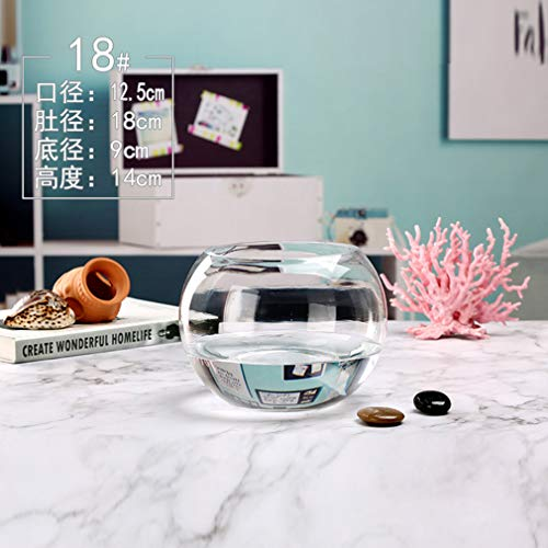 Aquarium glazen bol Verdikte super witte ronde vaas Home creativiteit Hydrocultuur plantenpot,18cm