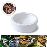 Worm Dish Mealworm Feeder, Animali Domestici Piatto d'alimentazione, Rettile Alimentatore in Ceramica, Design Anti-Fuga Adatto a Tartarughe, Lucertole, Gechi, Rane, Serpenti, Ragni e Altri Rettili