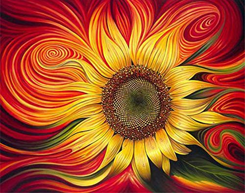 DIY Malen nach Zahlen für Erwachsene Junior Kinder, ABEUTY Rote Sonnenblume Pflanze 40x50cm Weihnachten Valentinstag Geschenk