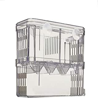40 gallon breeder overflow box
