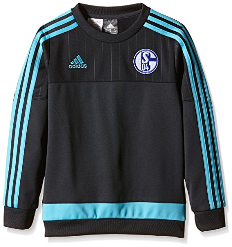 adidas Jungen Sweatshirt FC Schalke 04, Night Grey/Super Cyan S12, 152