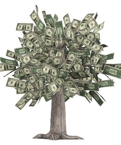 MONEY TREE GLOSSY POSTER PICTURE PHOTO grows dollars bills currency cash