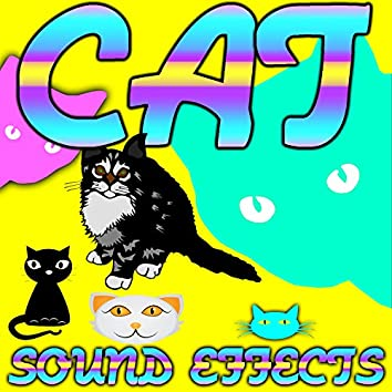 Cat Sound Effects