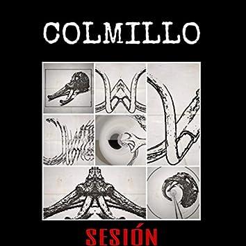 Colmillo Sesión